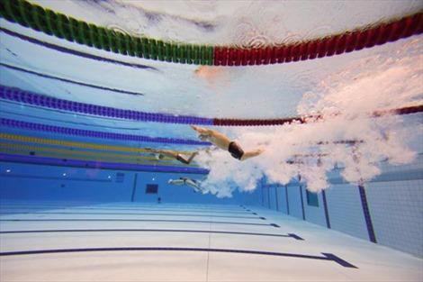 Việt Nam đoạt 4 HCV bơi lội ASEAN Para Games 8