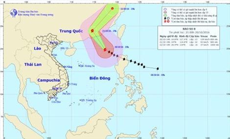 Các tỉnh từ Quảng Ninh-Khánh Hoà chủ động ứng phó bão số 8