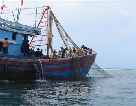 Giải pháp lâu dài để ngăn chặn khai thác hủy diệt hải sản