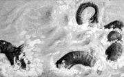 Quái vật hồ Storsjoe