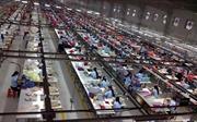 Việt Nam và Malaysia ký Bản ghi nhớ về tuyển dụng và sử dụng lao động