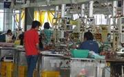 5.000 công nhân Freewell- Đài Loan trở lại làm việc