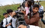 Người di cư được hỗ trợ gì khi đến Mỹ?