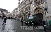 Bỉ đóng cửa các trường học do lo khủng bố tấn công hàng loạt