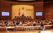 Quốc hội thông qua dự thảo Bộ luật Hình sự (sửa đổi)