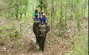 Tháng 3 - Cùng trải nghiệm du lịch Đắk Lắk