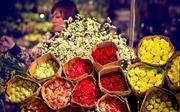 Bâng khuâng chợ hoa đêm