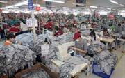 Hàn Quốc sẽ lại tiếp nhận lao động Việt Nam