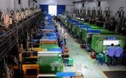 Chương trình đưa lao động Việt sang Hàn Quốc trở lại bình thường