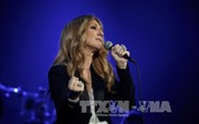 Celine Dion sắp ra album mới