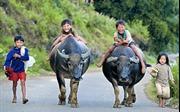 Các nhiếp ảnh gia nặng lòng với trẻ em nghèo