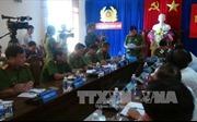 Khởi tố 9 bị can trong vụ phá rừng pơ mu tại Quảng Nam