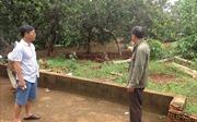 Khởi tố vụ án hành hung công an cưỡng chế ở Bình Phước