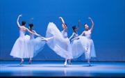 """Tái diễn chương trình """"Ballet với Tchaikovsky và Ravel"""""""
