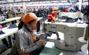 Thẩm quyền quyết định hợp đồng lao động