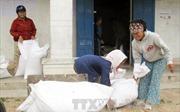 10 tỉnh xin hỗ trợ gần 10.000 tấn gạo cứu đói dịp Tết