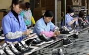Công nhân Công ty Giầy Thành Bách Việt Nam trở lại làm việc