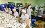 Hiệu quả dự án sản xuất thuốc chữa bệnh ung thư
