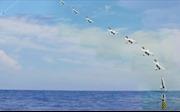 Lầu Năm góc bày trận máy bay không người lái thay binh sĩ diệt kẻ thù