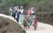 Xuân về trên bản người Mông xóm Mỏ Chì