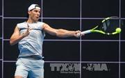 Nadal rút khỏi Davis Cup 2017