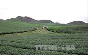 Cuộc sống mới ở bản tái định cư Mường Chiên I, Sơn La