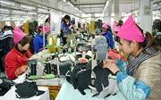 Đảm bảo quyền lợi và ổn định cuộc sống cho công nhân Công ty TNHH Everbest Việt Nam