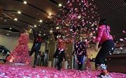 Người Việt Nam chi trung bình 600.000 đồng cho ngày lễ Tình yêu