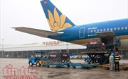 Vietnam Airlines vận chuyển miễn phí máy lọc thận nhân tạo cho Bệnh viện Thận Hà Nội