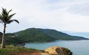 Phản hồi văn bản kiến nghị của Hiệp hội Du lịch Đà Nẵng gửi Thủ tướng