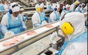Brazil khẳng định chất lượng hệ thống kiểm định vệ sinh thực phẩm