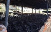 Cháy kho chứa xe vi phạm, hơn 100 xe máy bị thiêu rụi
