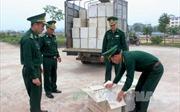 Vận chuyển cả xe trứng gia cầm trái phép, tài xế khai nhận tiền công 300.000 đồng