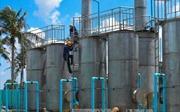 Hơn 2.300 hộ dân ở Cà Mau hết 'khát nước' trong mùa khô