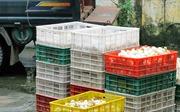 Lào Cai tịch thu 14.400 quả trứng vịt Trung Quốc