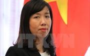 Việt Nam hoan nghênh phán xét của Tòa án quốc tế về Tập đoàn Monsanto