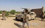 Mỹ triển khai lại lực lượng lính thủy đánh bộ tại tỉnh Helmand, Afghanistan