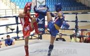 Việt Nam giành 2 huy chương vàng tại giải Muay thế giới 2017