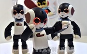 Thiếu lao động, doanh nghiệp Nhật Bản tăng cường người máy