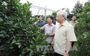 Tổng Bí thư Nguyễn Phú Trọng thăm, làm việc tại tỉnh Hòa Bình