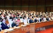 Chùm ảnh khai mạc trọng thể Kỳ họp thứ 3, Quốc hội khóa XIV