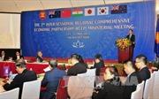 Thúc đẩy lưu chuyển thương mại hàng hóa, dịch vụ và đầu tư trong khu vực RCEP