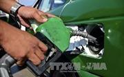 Giá dầu thế giới nối dài đà tăng trước thềm cuộc họp OPEC