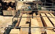Chây ỳ trong xử lý vụ việc vận chuyển gỗ lậu thuộc khu vực Đồn Biên phòng quản lý
