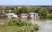 Cà Mau sẽ di dời 500 hộ dân vùng có nguy cơ sạt lở cao