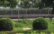 Cô gái trẻ chết bí ẩn trên thảm cỏ công viên cạnh cầu vượt Sóng Thần
