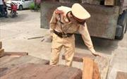 Thanh Hóa bắt giữ xe chở gỗ lậu