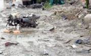 Quảng Nam: Ô tô chở cát gây tai nạn, 2 người thương vong