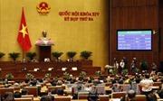 Quốc hội chú trọng chất lượng làm luật thay vì số lượng