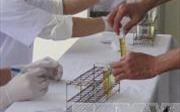 Hải Dương: Phát hiện 32 lái xe dương tính với ma túy